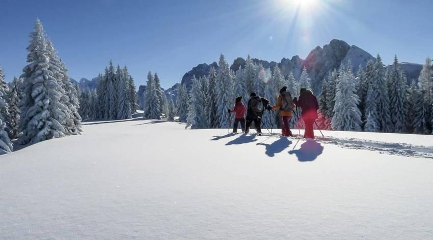 Schneeschuhwanderung Bibereck - Torfmoos