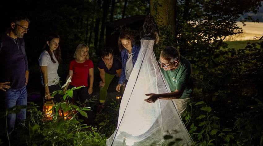 Die Natur der Nacht im Naturpark Attersee-Traunsee