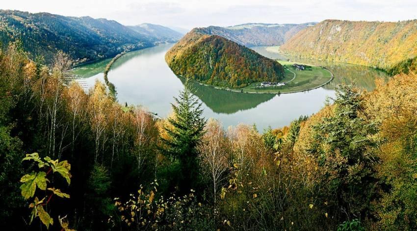 Wie kam der Wein ins Obere Donautal?