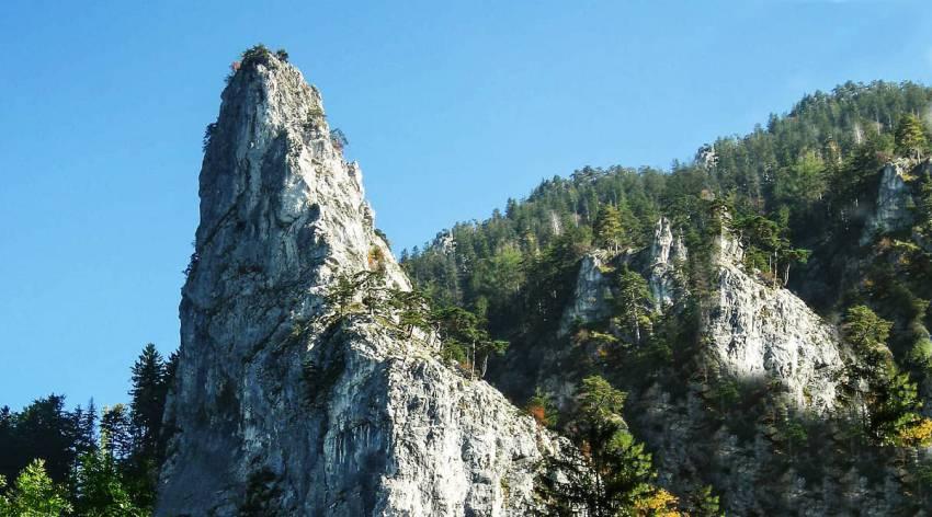 Abenteuer Gschliefgraben - durch die Kaltenbachwildnis