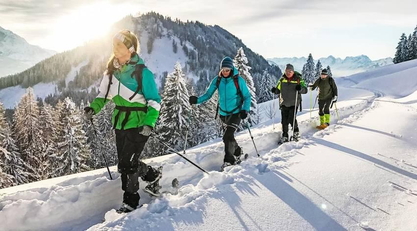 Mit Schneeschuhen durch den Winterwald