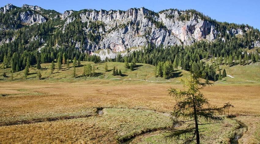 Bergparadies Warscheneck - Die Wurzeralm im Sommer
