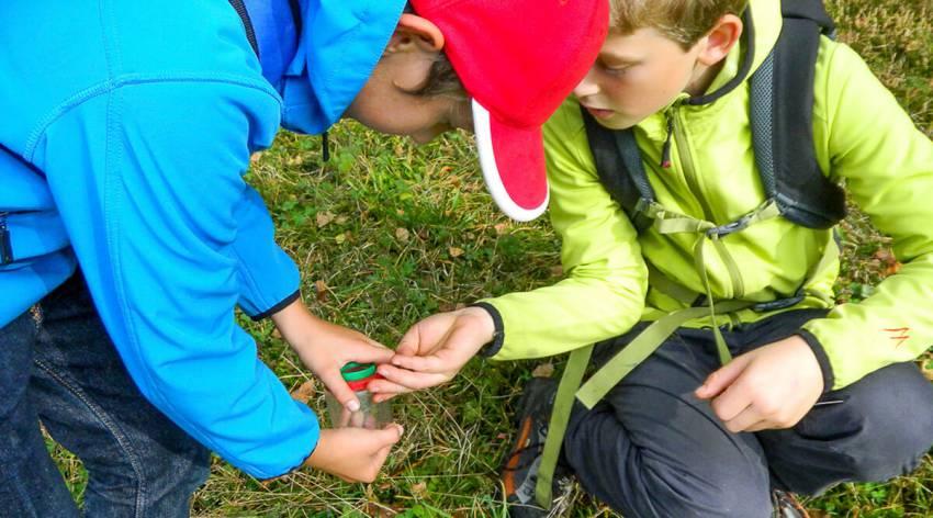Gesucht: Naturparkdetektive