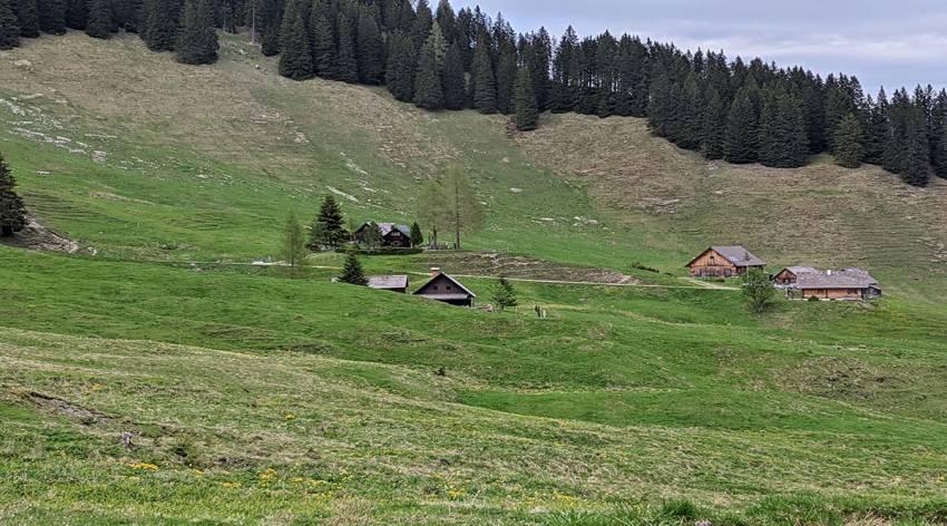 Bergparadies Warscheneck - Almen im Warscheneck-Gebiet