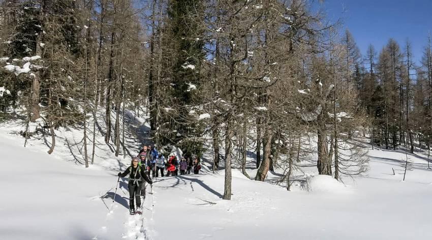 Bergparadies Warscheneck - Der Lärchen-Zirbenurwald im Winter